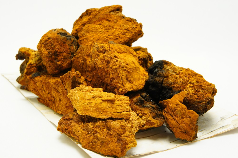 How To Brew Chaga For Immune Health
