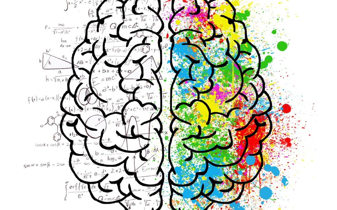 The Gut – Brain Connection