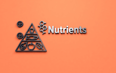 Some of the most important nutrients for Women's Health
